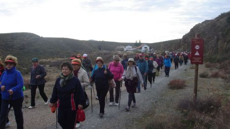 Más de 2.500 participantes participan en las rutas senderistas del programa 'Mayores en Forma'