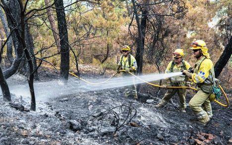 Controlado el incendio forestal que se ha declarado en el término de Yeste en Albacete