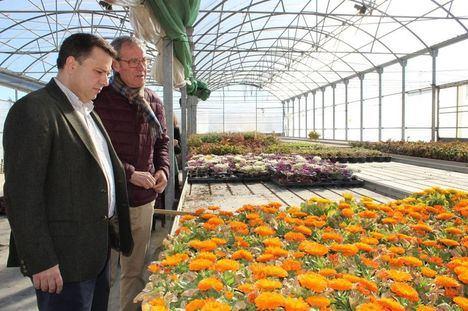El 95% de la flor de temporada y ornamental de las zonas verdes de Albacete proceden del vivero de la Fundación Asla