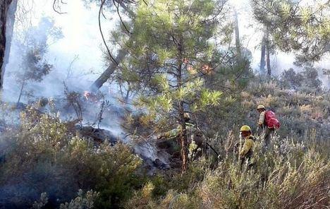 Un incendio forestal en Paterna del Madera (Albacete) obliga a desalojar a una familia en un cortijo