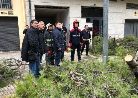 Manuel Serrano asegura que el Ayuntamiento está trabajando sin descanso para restablecer la normalidad en la ciudad tras la caída de árboles