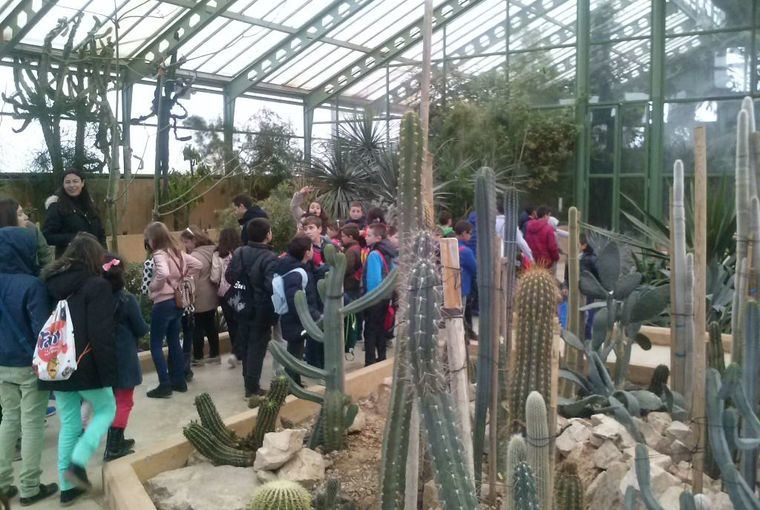 El patronato del Jardín Botánico de Albacete aprueba el plan de acción del 2020 orientado a una mayor divulgación