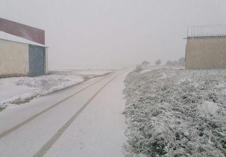 La nieve hace acto de presencia en El Bonillo y alrededores