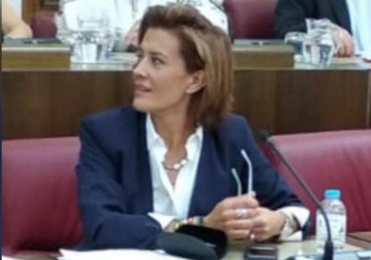 El Grupo municipal de VOX Albacete ha presentado dos mociones para su aprobación en el Próximo Pleno del Ayuntamiento