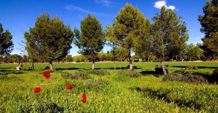 Los parques de La Pulgosa y los Pinares del Júcar abren este lunes con su horario habitual