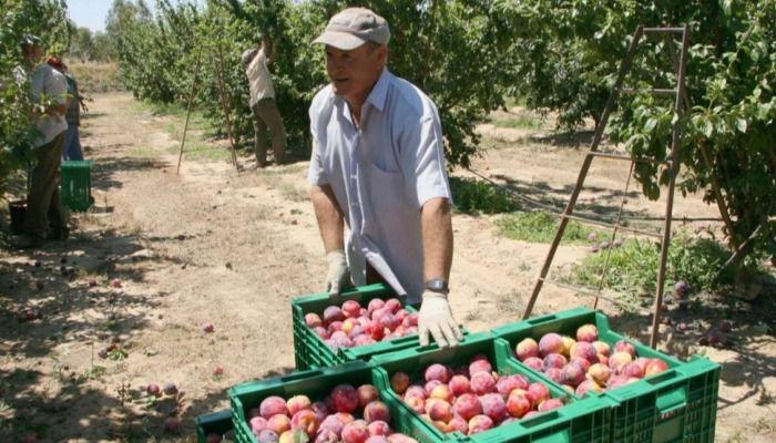 Castilla-La Mancha es la segunda región con mayor descenso del paro en el mes de mayo
