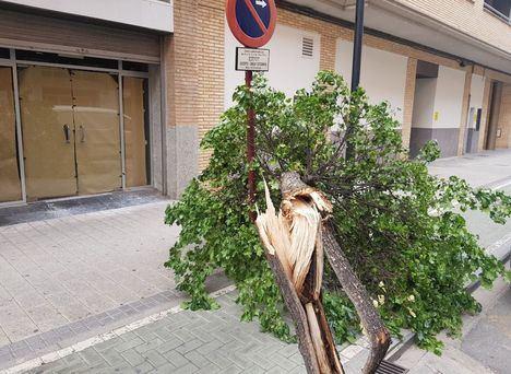 El Ayuntamiento de Albacete cierra los parques de la ciudad por las fuertes rachas de viento