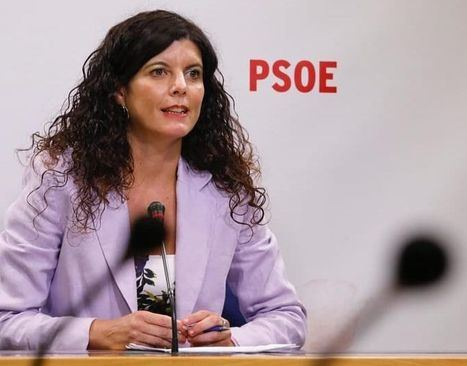 """El PSOE de Albacete lamenta """"la irresponsabilidad y la deslealtad mostrada por el PP, no con el Gobierno regional, sino con los castellano-manchegos"""""""