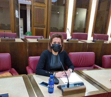 Aprobada por unanimidad la moción presentada por VOX en el Ayuntamiento de Albacete, para la apertura de los centros de atención a los enfermos de Alzheimer
