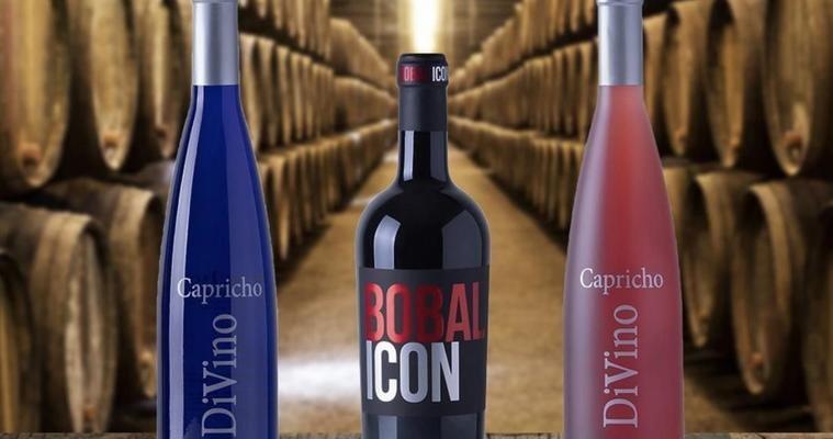 Vega Tolosa, los vinos ecológicos de Casas Ibáñez (Albacete) que triunfan en España